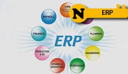 N-ERP